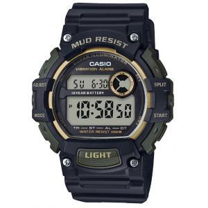 Pánské hodinky CASIO TRT-110H-1A2