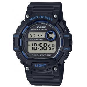 Pánské hodinky CASIO TRT-110H-2A